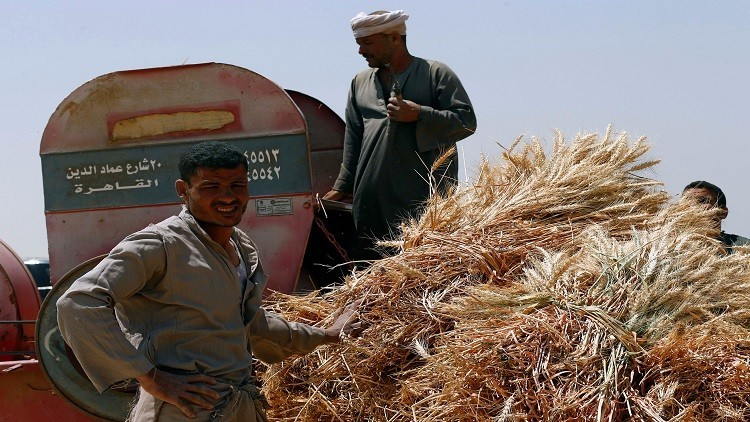 الاقتصاد المصري ينمو 3.9% في الربع الأول من 2017