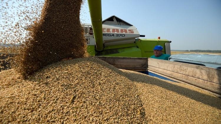 أنقرة تنفي فرض قيود جديدة على المنتجات الزراعية الروسية