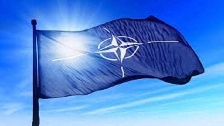خبير حول قمة الناتو: سيؤدون التحية وسيدفعون