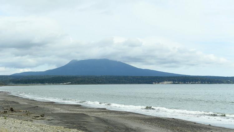 بوتين: واشنطن قد تقيم قواعد في جنوب جزر الكوريل في حال تسليمها لليابان