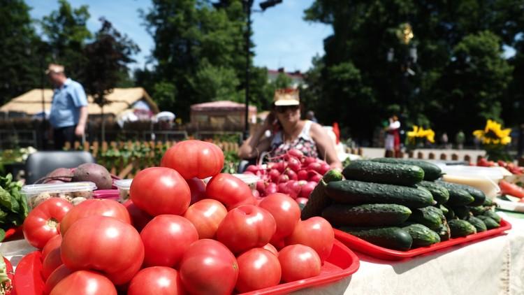 روسيا تستأنف استيراد جميع المنتجات التركية ماعدا الطماطم