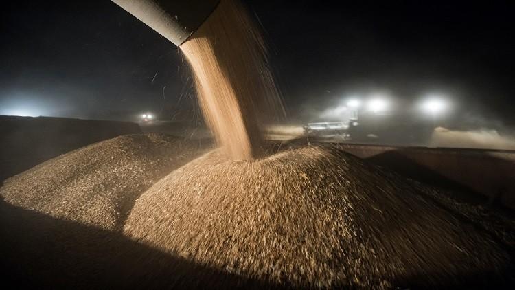 القاهرة تشتري 360 ألف طن من القمح الروسي والروماني في مناقصة