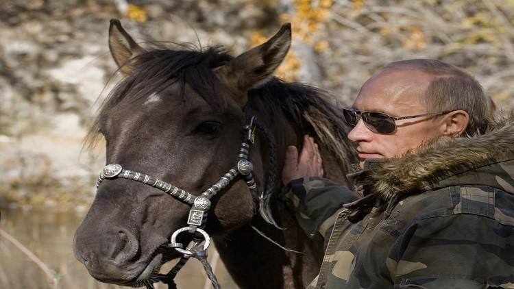 انطلاق سباق الخيول لجائزة الرئيس الروسي