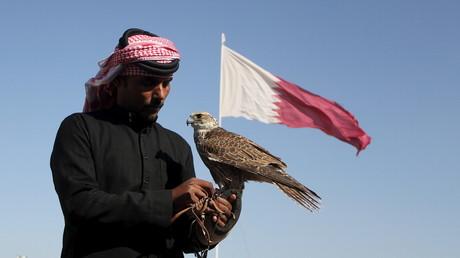 مربي صقور قطري