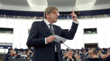 غي فيرهوفشتات، منسق عملية خروج بريطانيا من الاتحاد الأوروبي