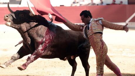 مصارع الثيران الإسباني إيفان فاندينو