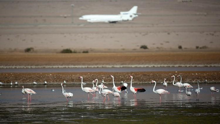 الأردن قلق من إقامة إسرائيل مطارا قرب العقبة!