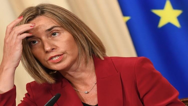موغيريني ستبحث مع لافروف الهدنة في سوريا والدور الأوروبي  فيها