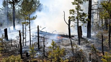 أرشيف - حرائق الغابات في  إقليم زابايكاليه شرقي روسيا