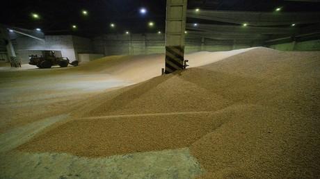 روسيا تخطط لتصدير 35 مليون طن من الحبوب