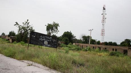ولاية بورنو - نيجيريا
