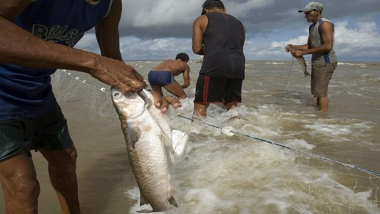 السعودية تحظر استيراد سمك من مصر