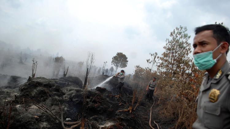 إندونيسيا.. أوامر عسكرية بإطلاق النار على مضرمي النار في الغابات