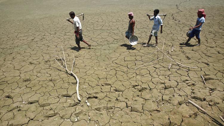 انتحار 34 فلاحا هنديا بسبب قلة الأمطار!