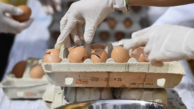فضيحة البيض الملوث تطال إيطاليا!