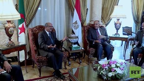 مصر والجزائر تؤكدان على محاربة الإرهاب