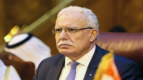 وزير الشؤون الخارجية الفلسطيني، رياض المالكي