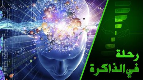 الإنسان ودماغه.. من يتحكم بمن وهل نملك حرية الاختيار أصلا؟ الرواية البديلة لتاريخ البشرية