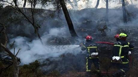 القبض على مشتبه به بافتعال 16 حريقا جنوب فرنسا