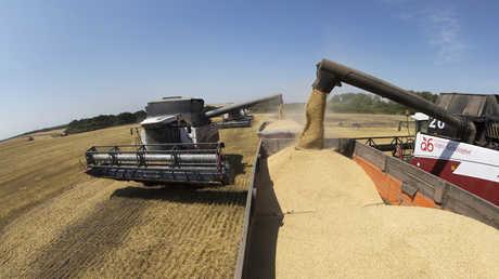 روسيا تجمع نحو 85 مليون طن من الحبوب