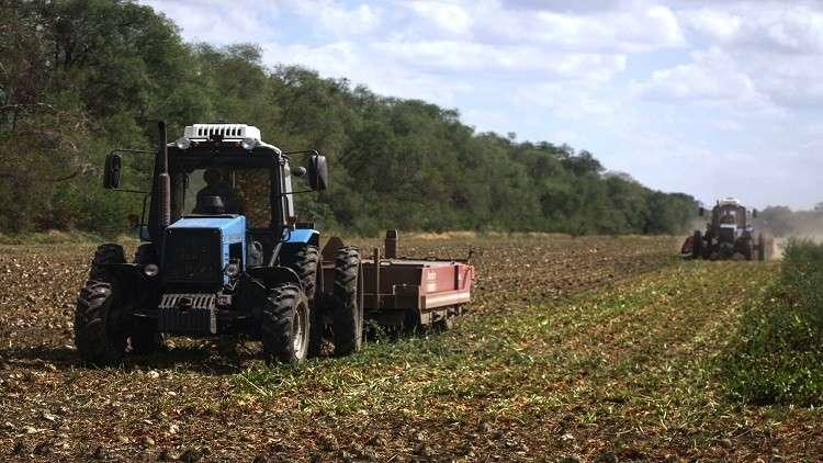 الاحتباس يدفع روسيا إلى الصدارة زراعيا