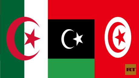 تونس والجزائر ترفضان تعدد المبادرات حول ليبيا