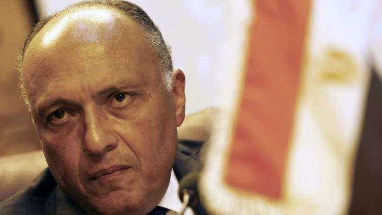 شكري: هناك تراجع في الدعم القطري للتنظيمات الإرهابية في سوريا