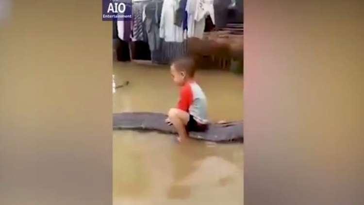صبي عمره 3 سنوات امتطى ثعبانا طوله 6 أمتار