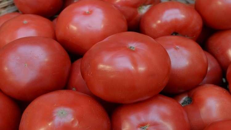 موسكو: قيود أنقرة توثر على قرار استيراد الطماطم التركية