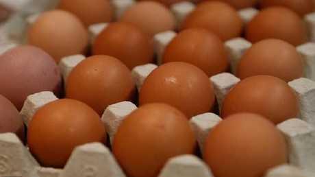 """""""البيض المنقذ للحياة"""""""