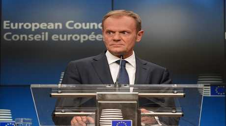 أرشيف - دونالد توسك رئيس المجلس الأوروبي