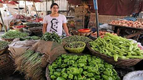 الكويت ترفع جزئيا الحظر عن صادرات مصر الزراعية