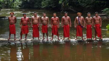 حرب البقاء في الأمازون!