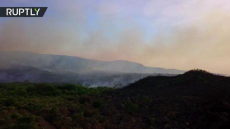 النيران تلتهم متنزها وطنيا في البرازيل