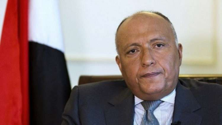 وزير الخارجية المصرية يجول في 6 دول عربية