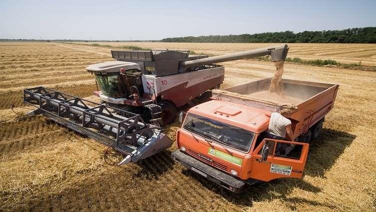 محصول القمح القياسي في روسيا يهدد الولايات المتحدة