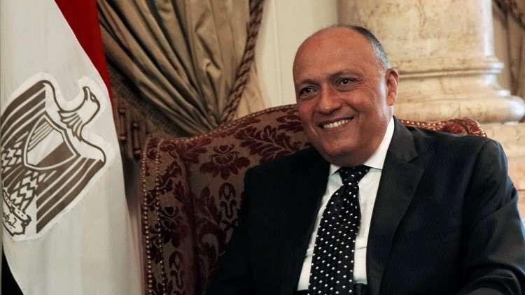 وزير الخارجية المصري يعلق على زيارة رئيس وزراء قطر إلى إثيوبيا