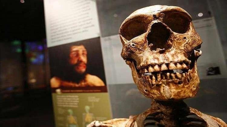 اكتشاف قد يغير نظرية التطور البشري