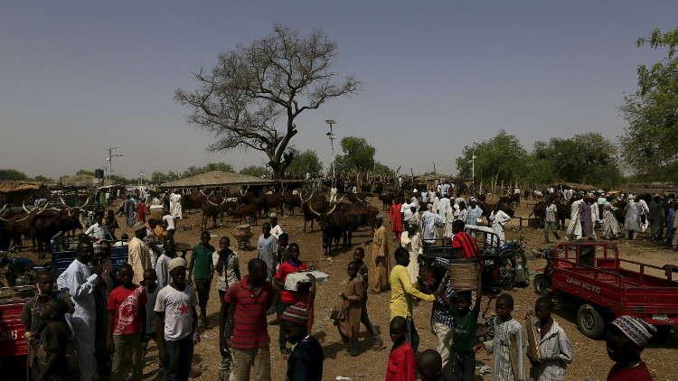 مقتل 30 من رعاة المواشي بهجوم مسلح في نيجيريا