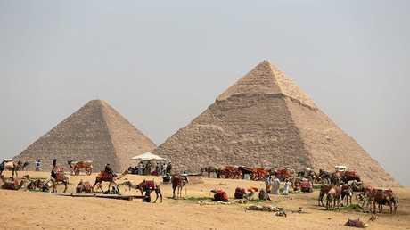 """مسؤول مصري يكشف لـ """"RT"""" عن حجم الاستثمارت الروسية بمصر"""
