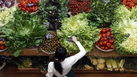 تذليل العقبات أمام تجارة المنتجات الزراعية بين روسيا وتركيا