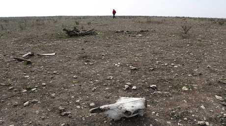 موجة جفاف تضرب الدار البيضاء في المغرب - أرشيف