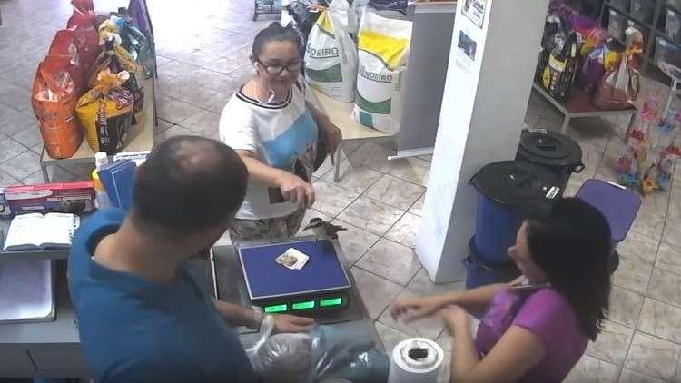 طائر جريء يسرق أوراقا نقدية في وضح النهار بالبرازيل!