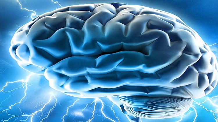 ما علاقة تربية الأطفال بتطور ذاكرة البشر؟