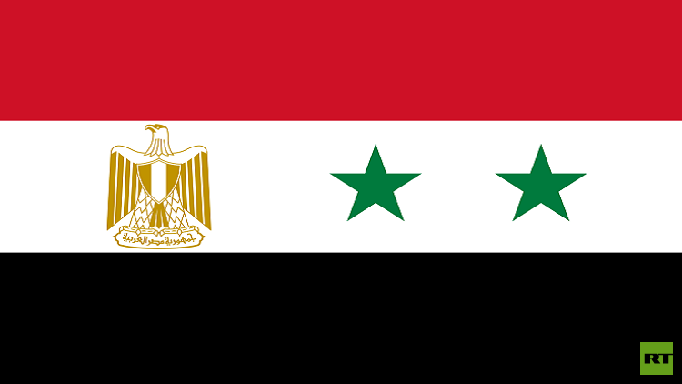 مصر تعتزم مد خط طاقة مع سوريا