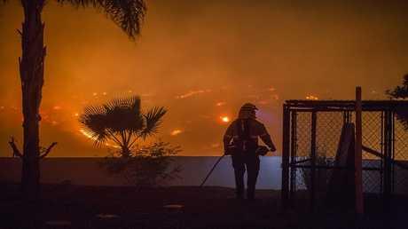 حرائق الغابات في ولاية كاليفورنيا الأمريكية