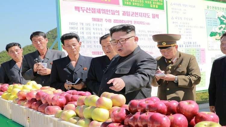لماذا لا تحتفل كوريا الشمالية بعيد ميلاد زعيمها؟