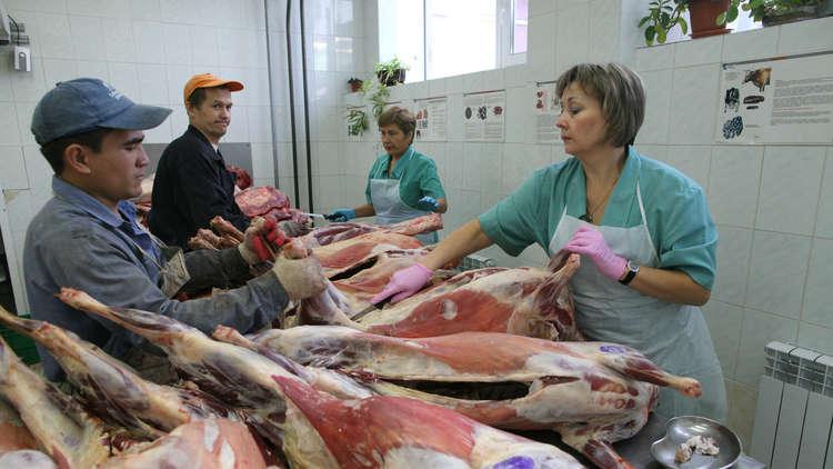 المغرب يفتح أسواقه أمام اللحوم الروسية