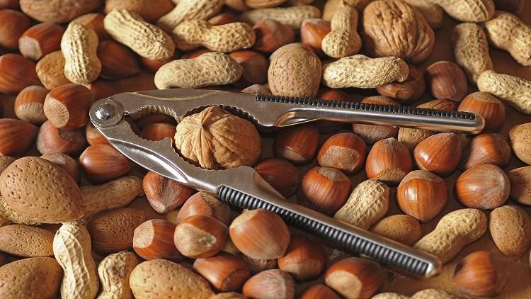 مواد غذائية ترفع درجة ذكاء الطفل