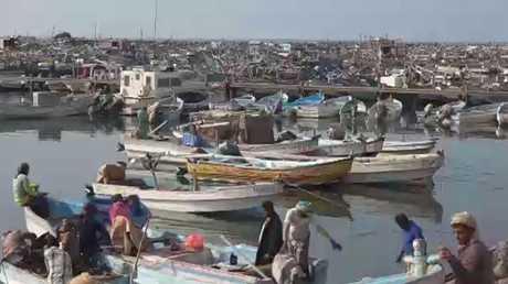 صيادو الحديدة ... بلا أسماك وبلا قوارب